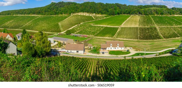 Panoramic view of countryside and vineyards in Chablis area, Burgundy, France