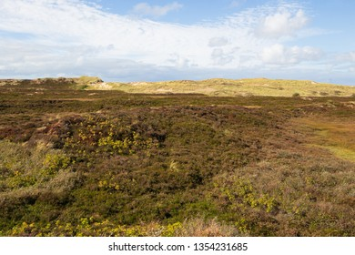 panoramic view at dunes in List at Sylt island