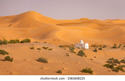 Panoramic view of dunes with some vegetation in  Grand Erg Occidental in Sahara desert, Algeria