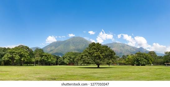 Panoramic view of El Avila mountain from Parque del Este (East Park), in Caracas, Venezuela