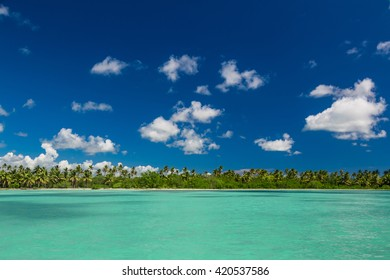 Panoramic view of Exotic Palm trees and lagoon on the tropical Island beach.