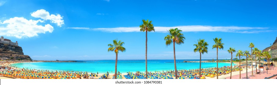 Panoramic view of famous Amadores beach and seafront with palm trees. Spanish resort. Gran Canaria, Canary islands, Spain