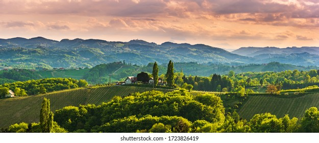 Panoramic view at famous wine street in south styria, Austrian destination, tuscany like vineyard hills. Tourist destination