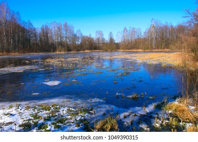 Panoramic view of flooded and frozen grassy forest meadows in early spring season in central Poland mazovian plateaus near Warsaw - Shutterstock ID 1049390315