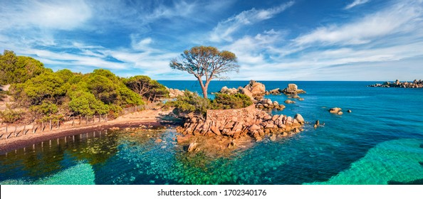 Panoramic view from flying drone of Tamaricciu beach. Marvelous morning scene of Corsica island, France, Europe. Attractive Mediterranean seascape. Beauty of nature concept background.