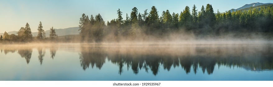 Panoramic view of forest lake in morning fog, summer travel