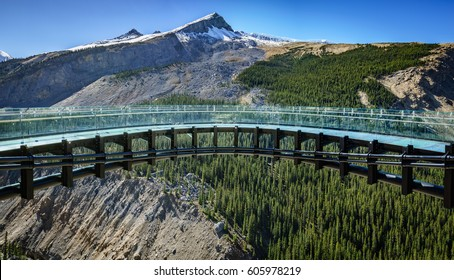 A panoramic view of the glacier skywalk made of glass near the Columbia Icefield, Jasper, Alberta, Canada