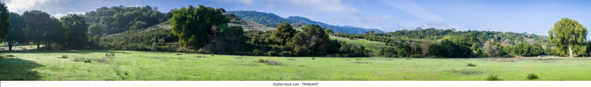 Panoramic view of a green meadow on a sunny morning in Rancho San Antonio County Park, Santa Cruz mountains, Cupertino, Santa Clara county, California