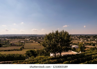 Panoramic view of the hills around Locorotondo in southern Italy