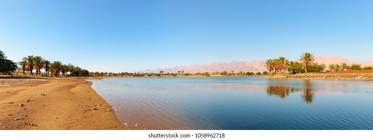 Panoramic view of idyllic oasis in the south of Israel. Shore of the lake and mountains on the horizon.