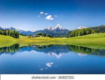 澄んだ山湖と新鮮な緑の山岳地帯を背景に、アルプスの牧歌的な夏の風景をパノラマで見る