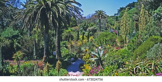 Mediterranean Garden Images, Stock Photos & Vectors | Shutterstock