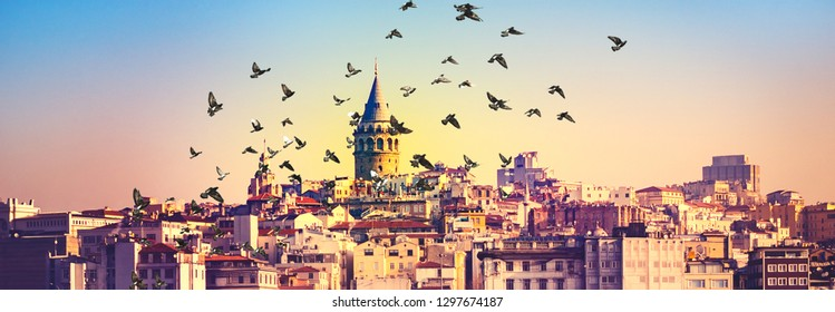 Panoramic view of Istanbul with Galata Tower at skyline and flying birds over town. Urban landscape of Istanbul with buildings of Beyoglu and Karakoy areas, travel background for your flyer.