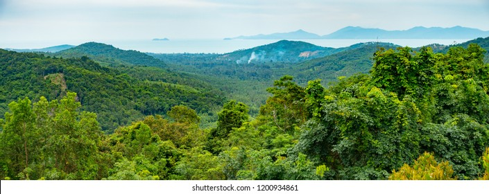 Panoramic view of Koh Samui island jungle from a hill top, Thailand