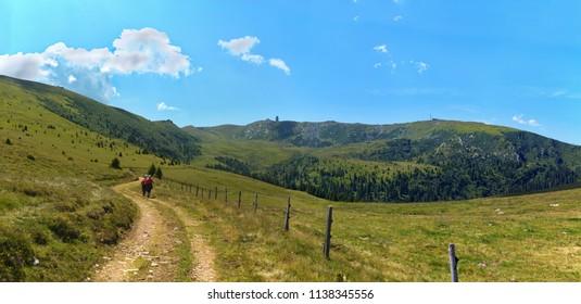 Panoramic view of the Koralpe / Lower Carinthia / Austria