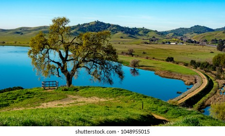 Panoramic view of  Lagoon Valley Park in Vacaville, California, USA, featuring oak tree and a lake and pedestrial walkway around it, from above