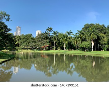 Panoramic view of a lake surrounded by palm tress and tropical nature in Goiania, Goias, Brazil