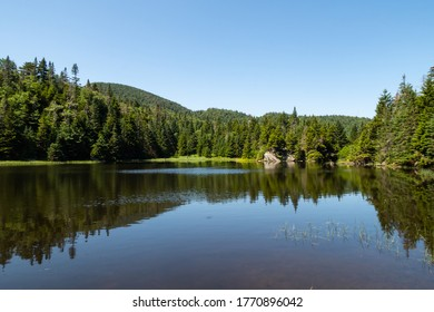 panoramic-view-lake-vogel-mont-260nw-177