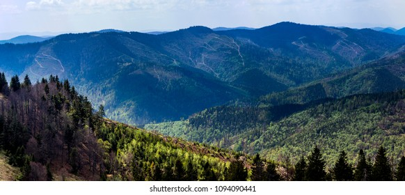 the panoramic view of landscape of the carpathian mountains, national park Skolevski beskidy, Lviv region of Western Ukraine