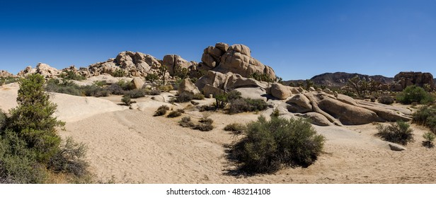 Panoramic view of landscape and horizon in the Mohave Desert, Joshua Tree National Park, California