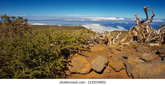 Panoramic view of a landscape in the island of La Palma, Canary Islands, Spain