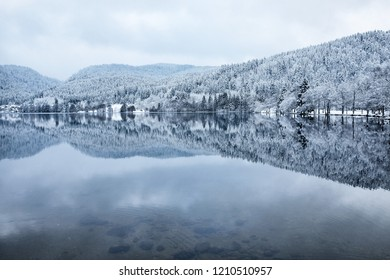 Panoramic view of Longemer Lake in the Vosges mountains, Xonrupt-Longemer, Lorraine, France. Picturesque winter landscape with white snowy trees reflected in water.