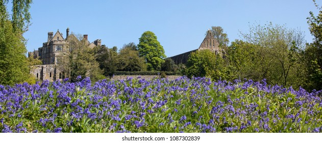 Panoramic view looking over the Bluebells towards Battle Abbey and Battle Abbey School, in East Sussex, UK.  The fields at Battle Abbey are where the Battle of Hastings took place in 1066.