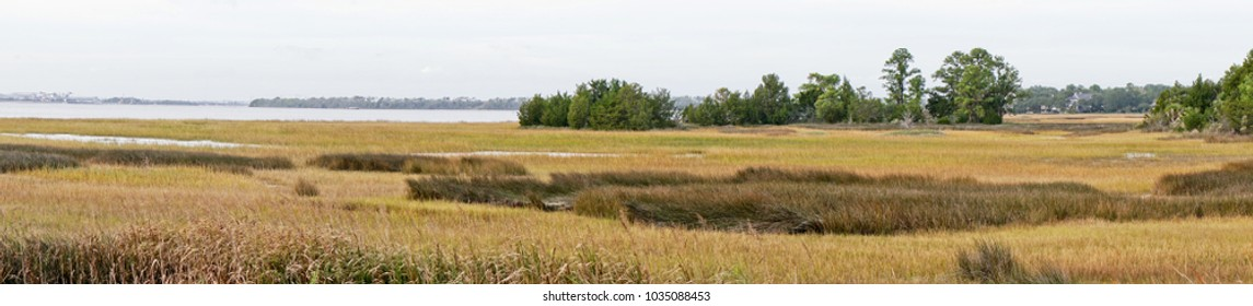 Panoramic view of a marsh on the outskirts of Charleston South Carolina