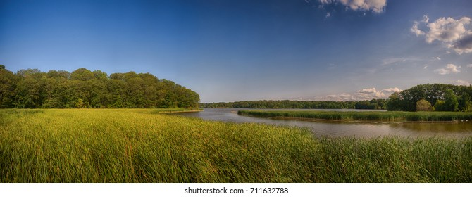 Panoramic view of marshland landscape in Ontario's Royal Botanical Garden aka RBG during summer time