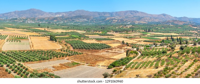 Panoramic view of Messara plain from the hill of Phaistos. Crete, Greece