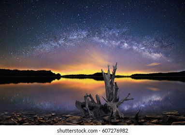 Panoramic view of The Milky Way over Salt Fork lake, Ohio with interesting driftwood in the foreground.