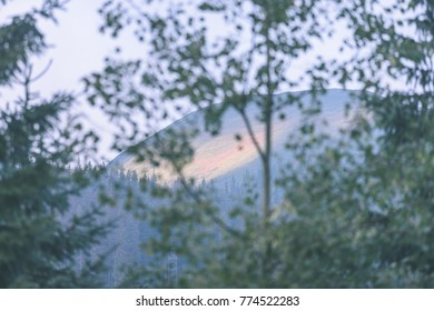 panoramic view of misty forest. far horizon. mountain area in slovakia  with mountains hiding behind trees - vintage effect film look