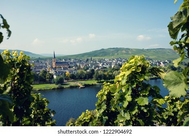 Panoramic view of Moselle Valley in Germany. Vineyards and river Mosel in Trittenheim in summer.
