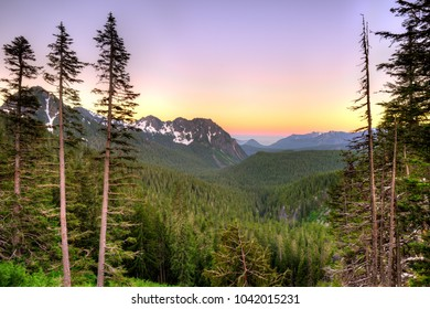 Panoramic view of Mount Rainier National Park, Washington State, USA