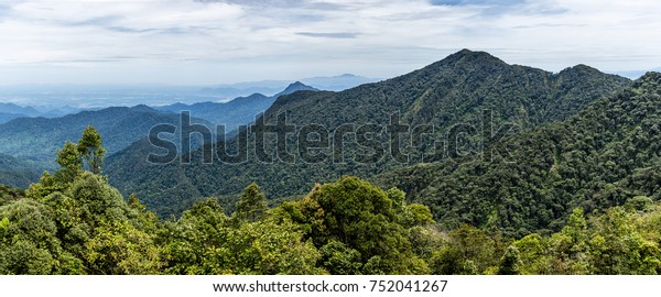 Panoramic view of the mountainous area in the Cameron Highlands in Malaysia.
