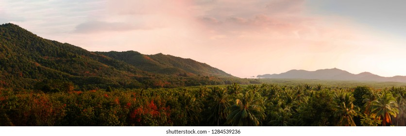 Panoramic view of the mountains and beautiful tropical forest in summer when the light of afternoon hits the mountain resulting in a dimension and the beautiful colors of trees that are deciduous