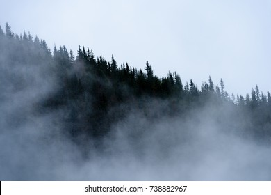 panoramic view of of mountains in misty forest. far horizon.