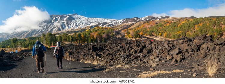 Panoramic view of northern side of Mount Etna, Sicily, with a pine and beech wood and hikers on a lavic path - Shutterstock ID 769561741