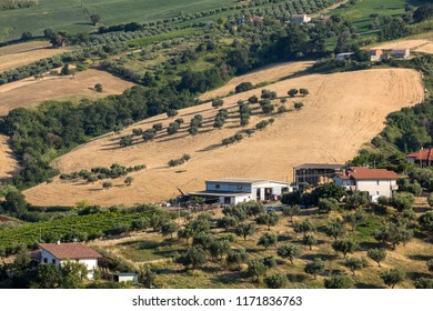 Panoramic view of olive groves and farms on rolling hills of Abruzzo. Italy