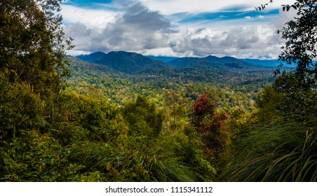 The panoramic view on the higher second look-out of Teresek Hill gives a superb view to the north lowlands and hills to the high mountains in the centre of the Taman Negara National Park in Malaysia.