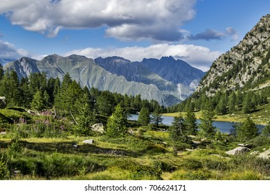a panoramic view on the park sorrounding Arpy lake on Alps, and mountain range on background.