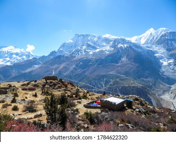 A panoramic view on a small house in Manang valley from Praken Gompa, Nepal. High Himalayan ranges around. There is a small torrent in the valley. Snow capped peaks of Annapurna Chain. Harsh landscape