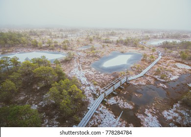 Panoramic view on swamp covered in fog and snow. Early winter arrived with gloomy weather. Wooden trail leading to the watch tower surrounded by swamp pounds and junipers.