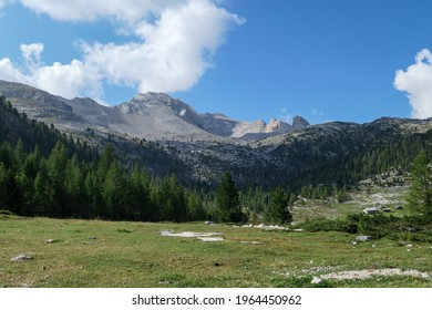 A panoramic view on the valley in Italian Dolomites. Dense forest overgrows the mountains slopes. Lush green meadow in front. High mountain chains in the back. Spring in the mountains. Sunny day.