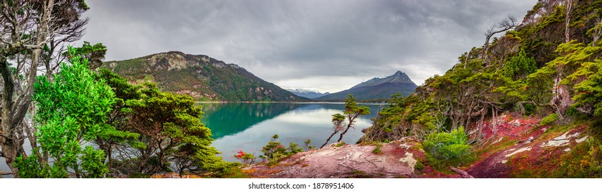 Panoramic view over beautiful and colorful landscape at Ensenada Zaratiegui Bay in Tierra del Fuego National Park, near Ushuaia and Beagle Channel, Patagonia, Argentina, early Autumn