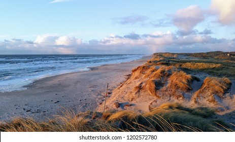 Panoramic view over the dunes of beach of West Denmark overlooking the North Sea by sunset with rain clouds in the sky at the horizon.