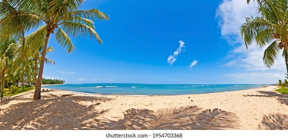 Panoramic view over the endless and deserted beach of Praia do Forte in the Brazilian province of Bahia during the day in summertime