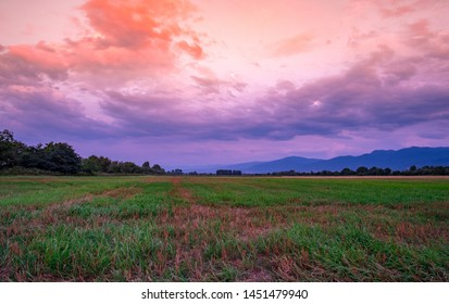 Panoramic view over a meadow field at sunset with mountains in the background