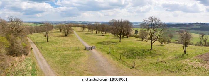 Panoramic view over a meadow and hills of the south Eifel landscape with some dirt roads and trees near Daun, Germany.