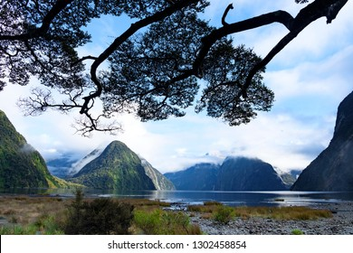 Panoramic view over Milford Sound, Fjordland, South Island, New Zealand